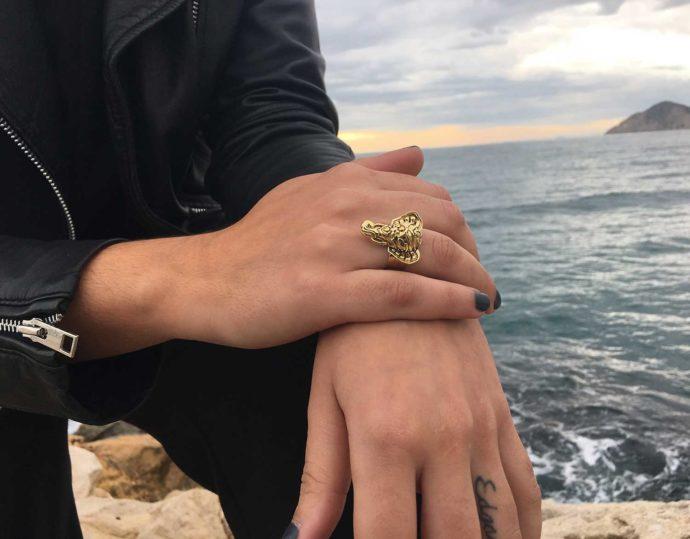 Elephant ring model